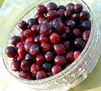 Cranberry Sauce Recipe from Heritage Recipes